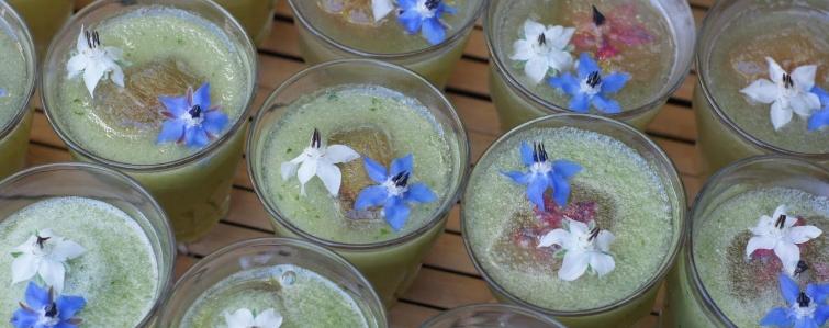 komkommercoctail met komkommerkruid